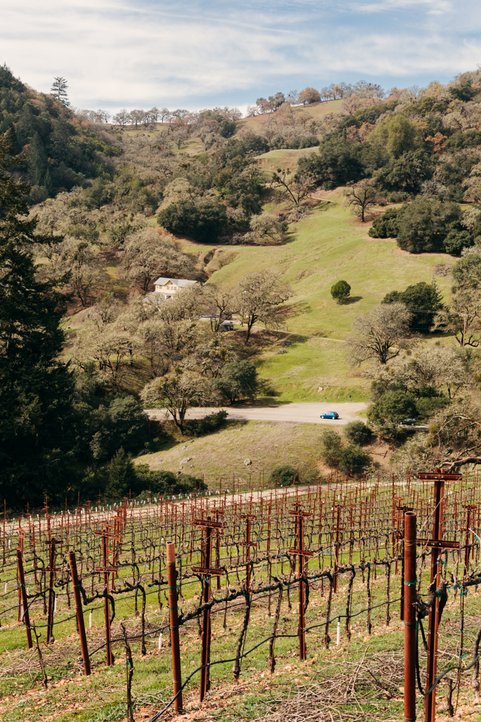 Sonoma County, California. Brad Torchia is an LA-based editorial and commercial photographer.