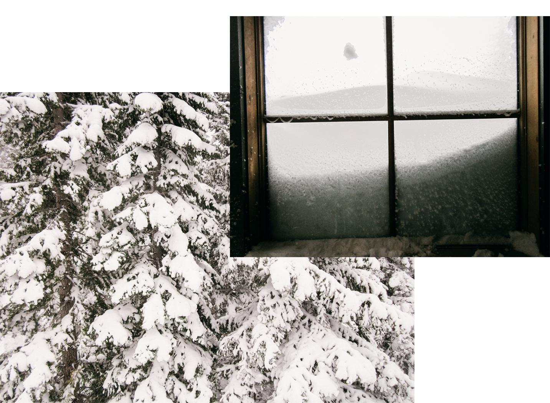 Snow in Tahoe, CA. Brad Torchia is an LA-based photographer.
