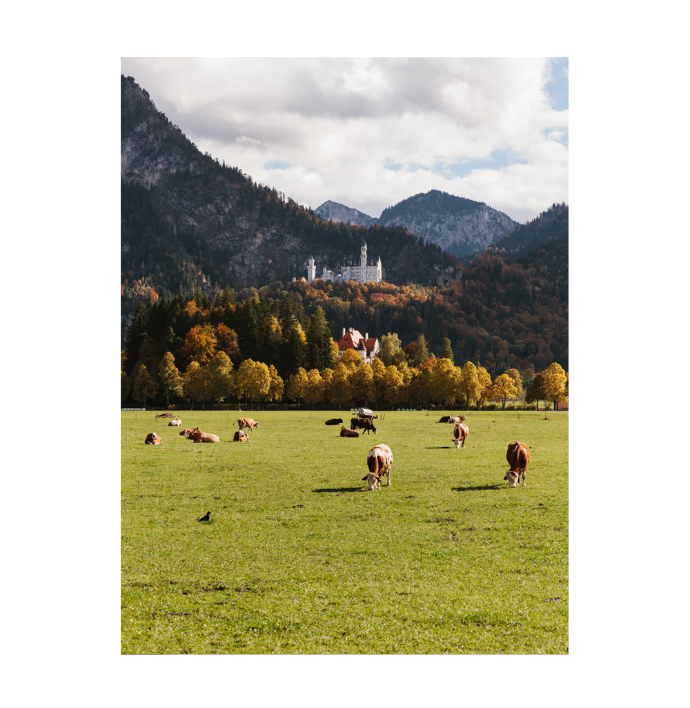 Germany and Salzburg, photographed by Brad Torchia. Brad Torchia is an LA-based editorial and commercial photographer.
