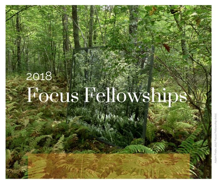 2018 Focus Fellowship Intro.png