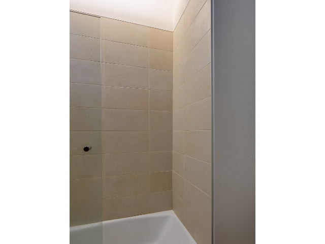Custom Tiles on Shower