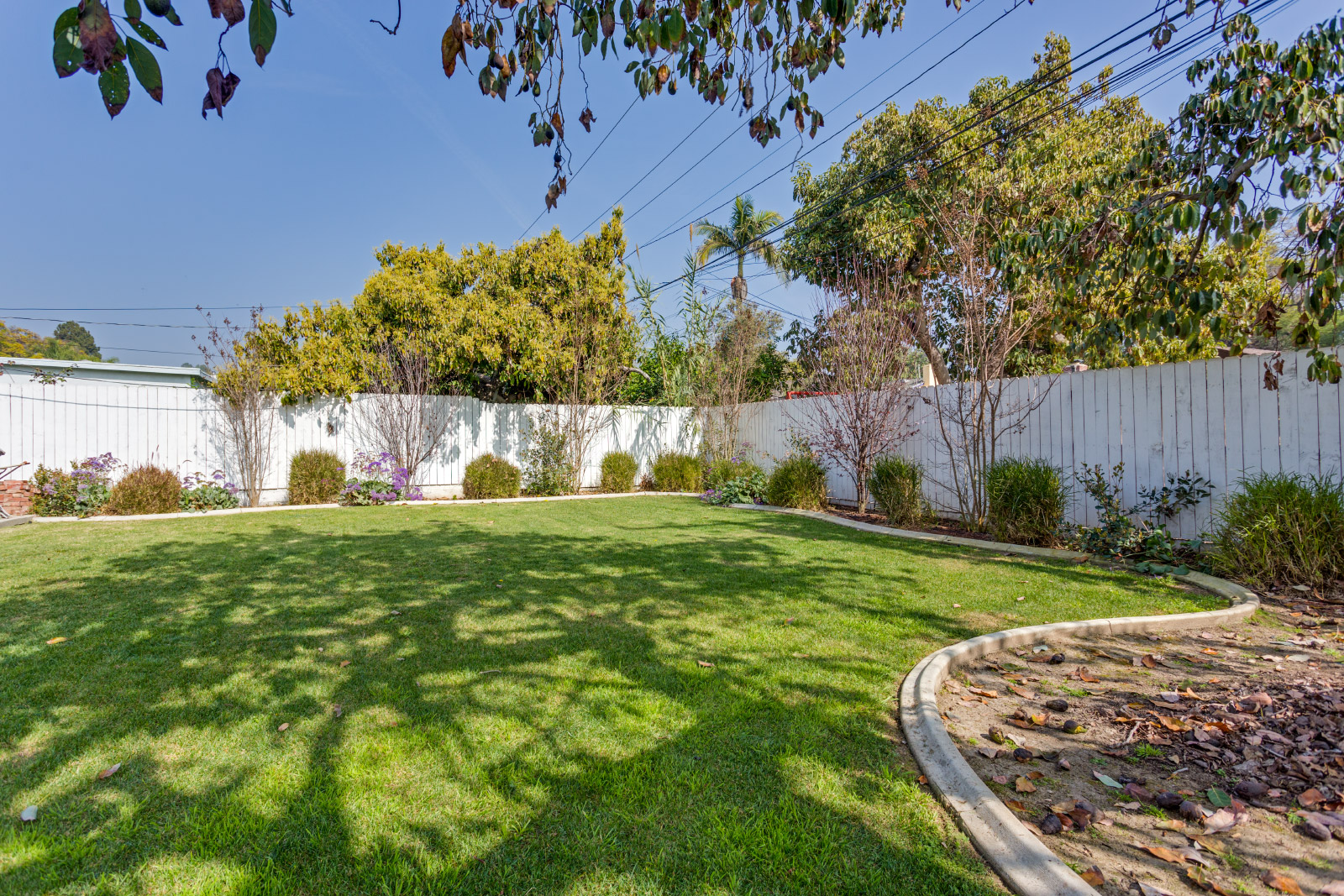 backyard-grass_16580733728_o.jpg
