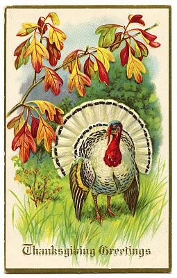 thanksgiving turkey vintage image graphicsfairy005.jpg