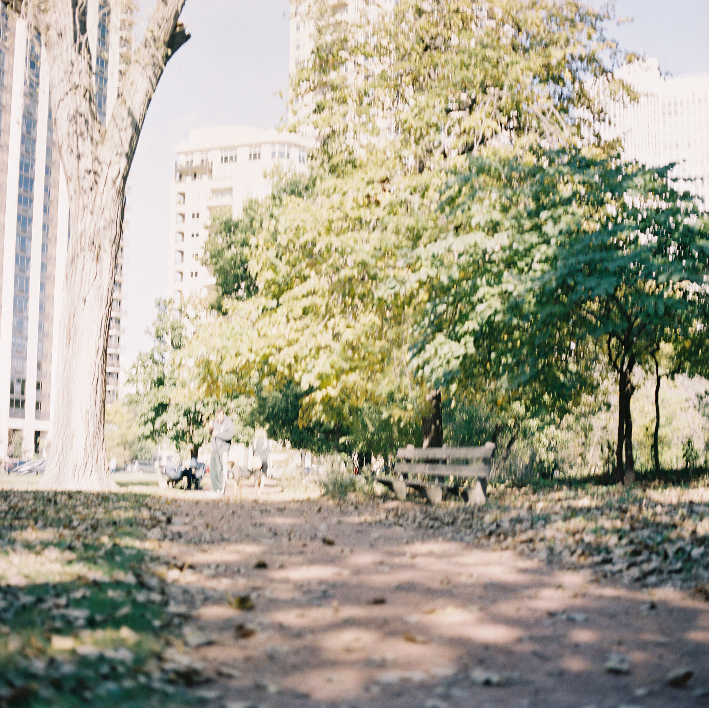 First photograph taken with the Hasselblad