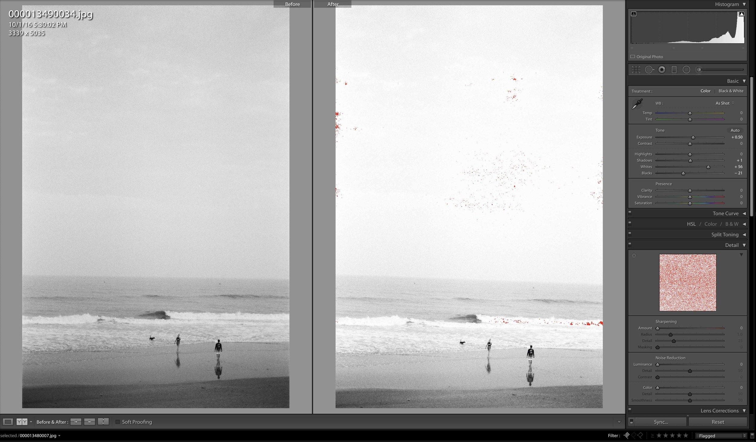 Leica M6, Summicron-M 50mm f/2, Kodak Tri-X 400,Rated @ 200 ISO