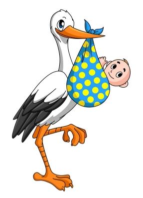 cutcaster-902736530-Stork-with-newborn-baby-small.jpg
