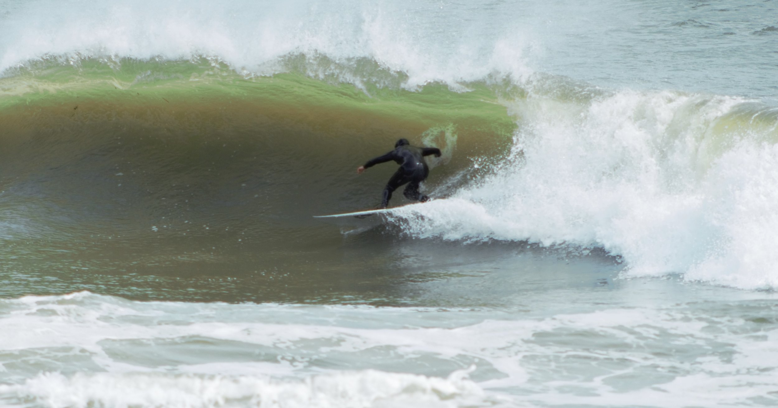 Surfweb.jpg