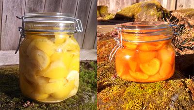 preserved-lemons.jpg