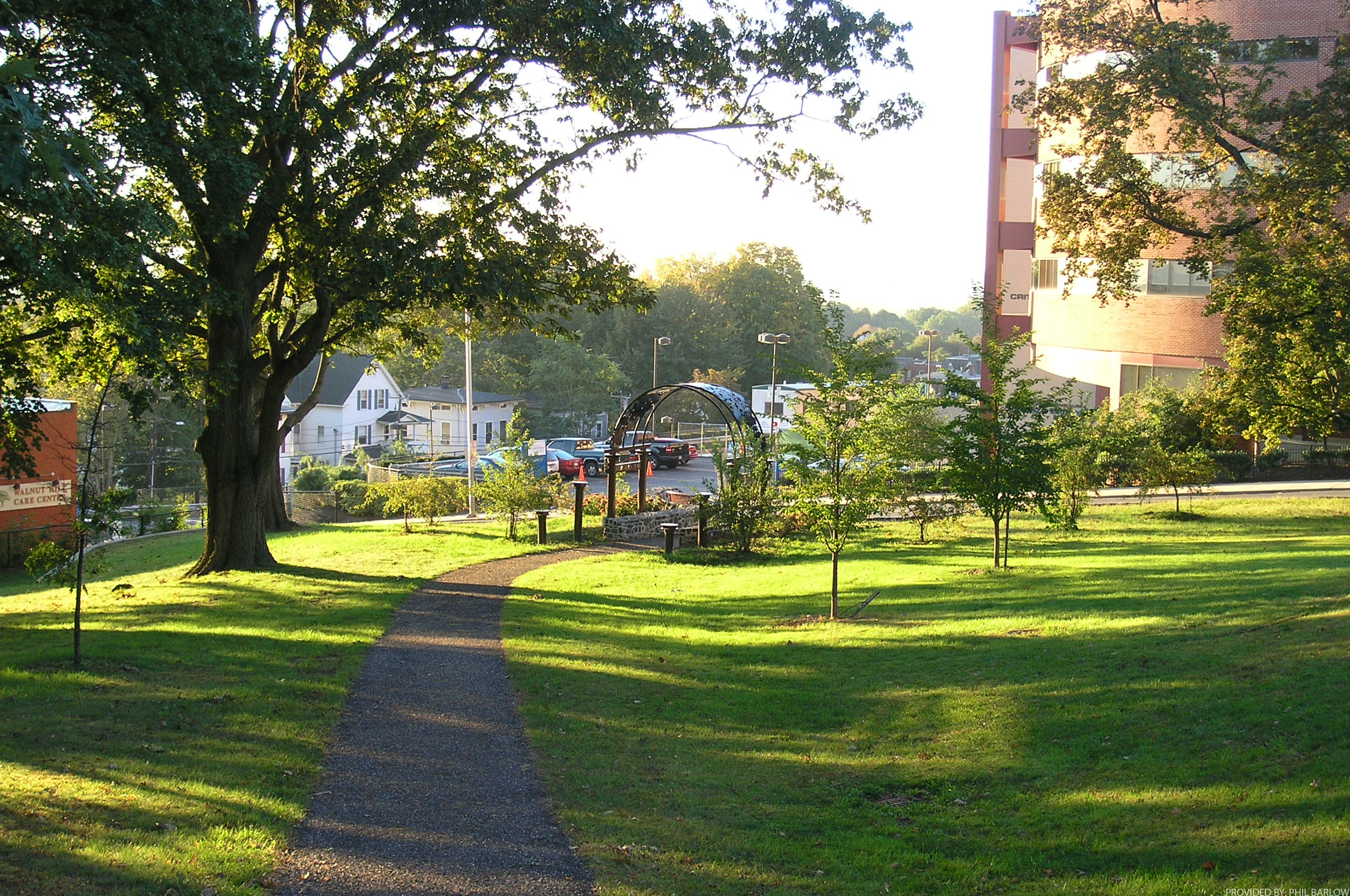 Walnut Hill Park