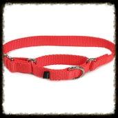 martingale safety collar