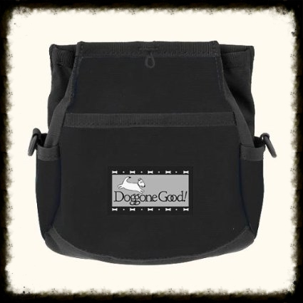 Bait bag - to hold wonderful treats and training and management items.