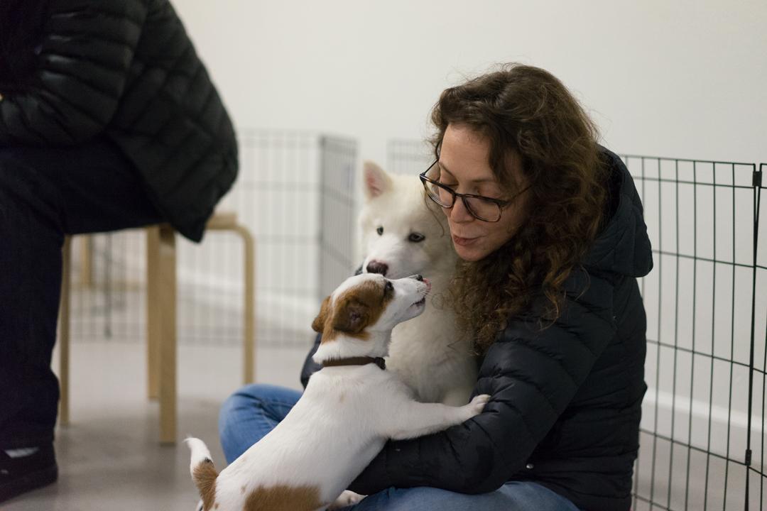 Puppy Socials — SmartyPup!