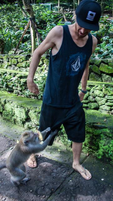A monkey borderlineassaultingKilian for a banana.