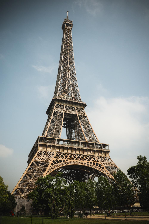 europe effiel tour cat benji.jpg
