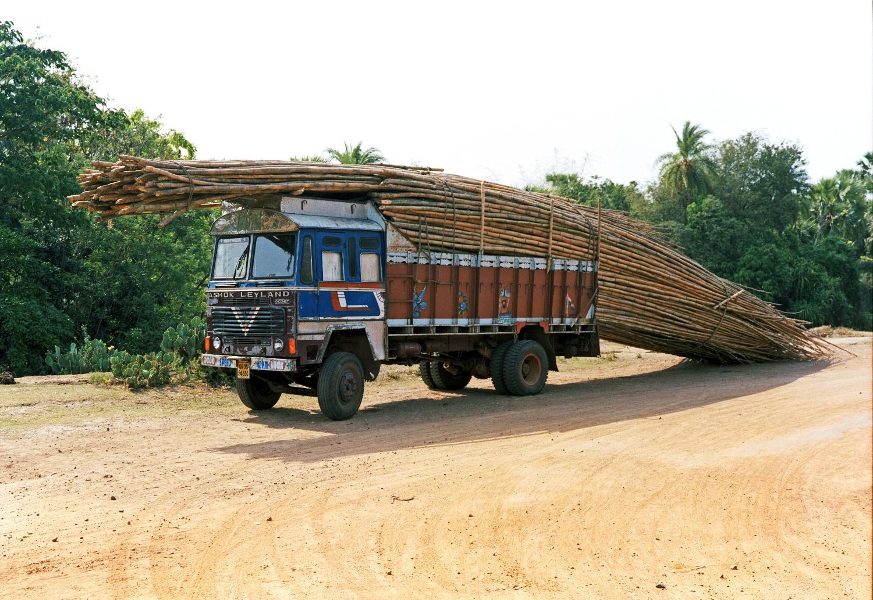 Tata w-bamboo_1.jpg