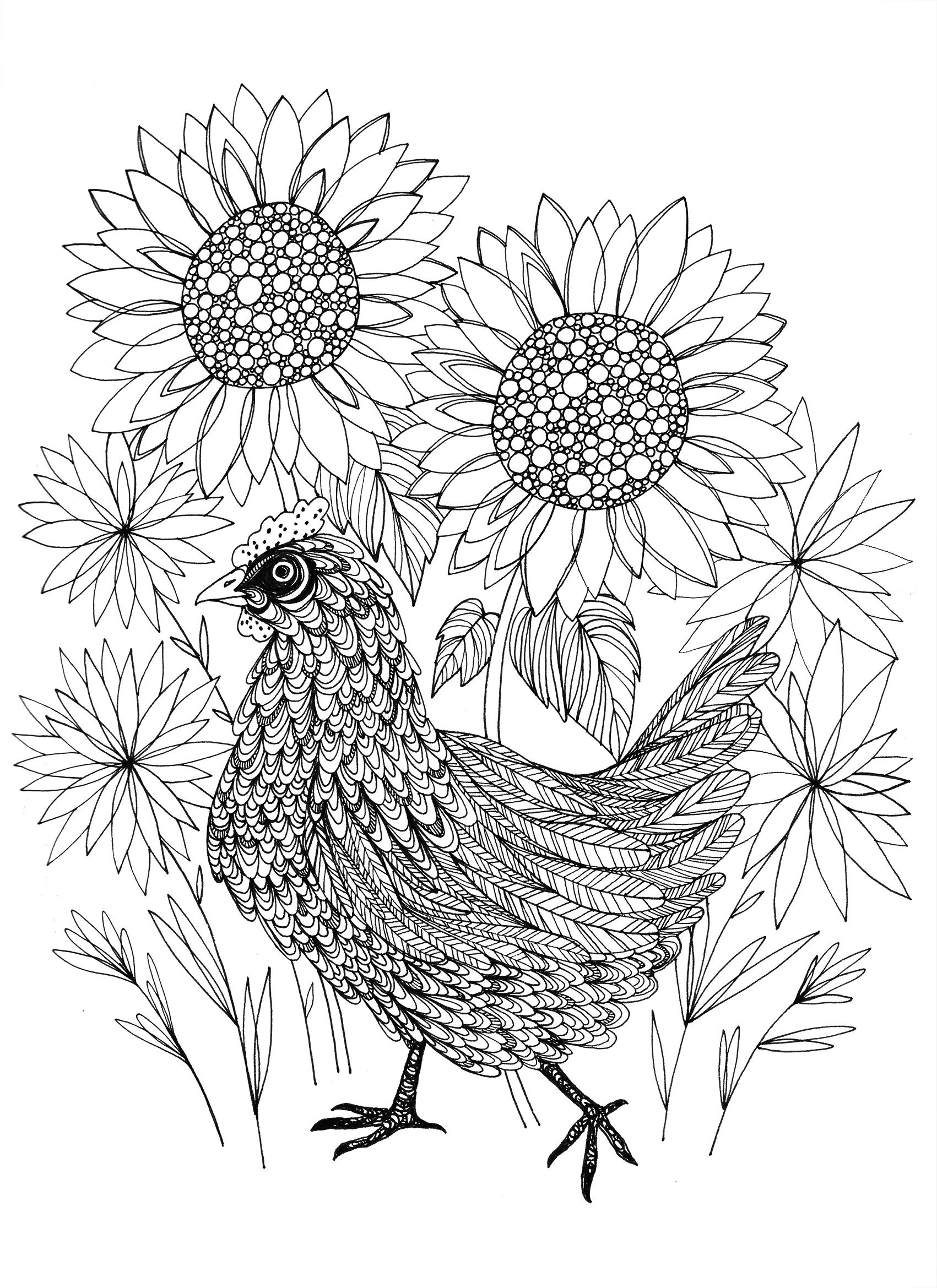Garden Chicken