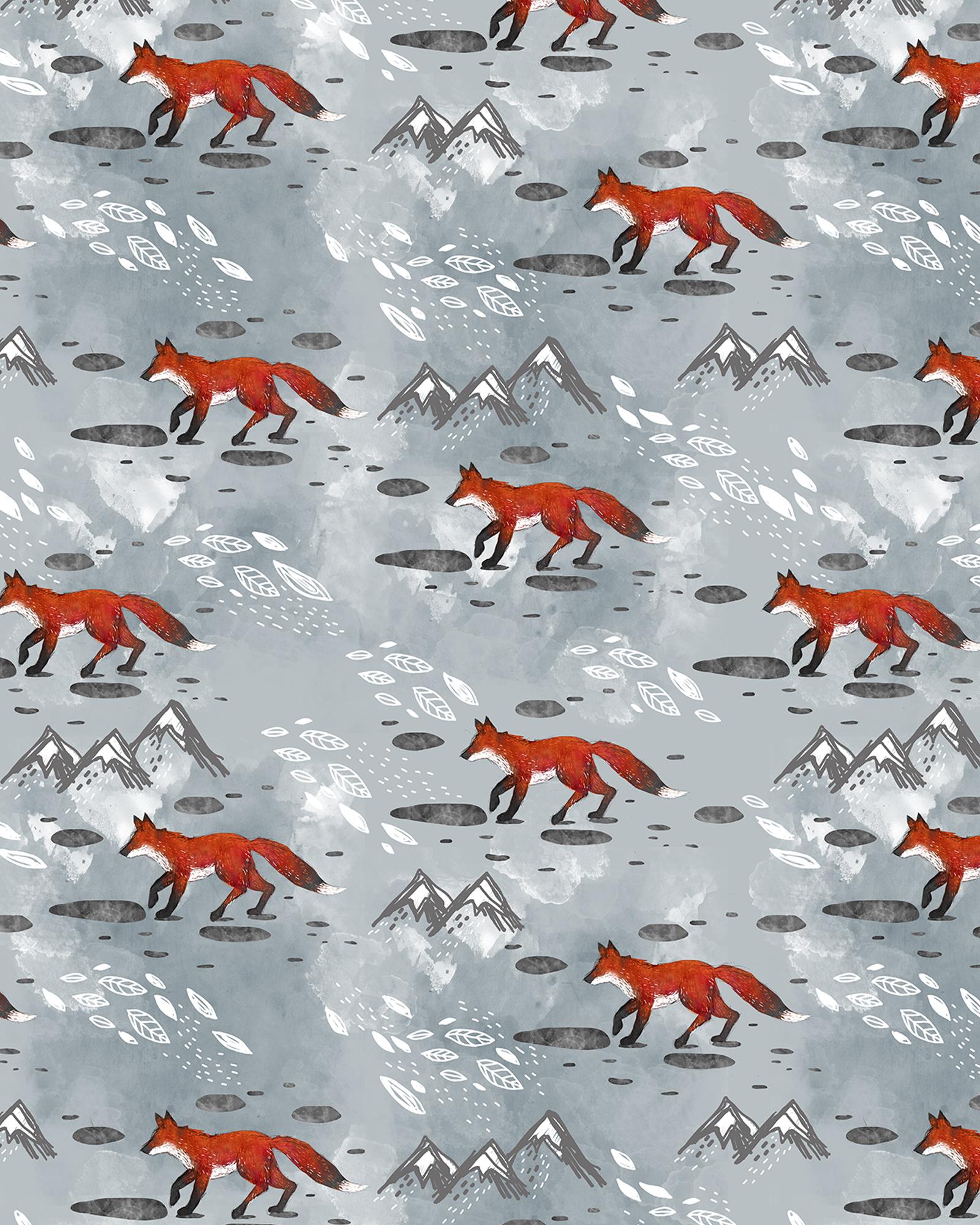 Little Mountain Foxes