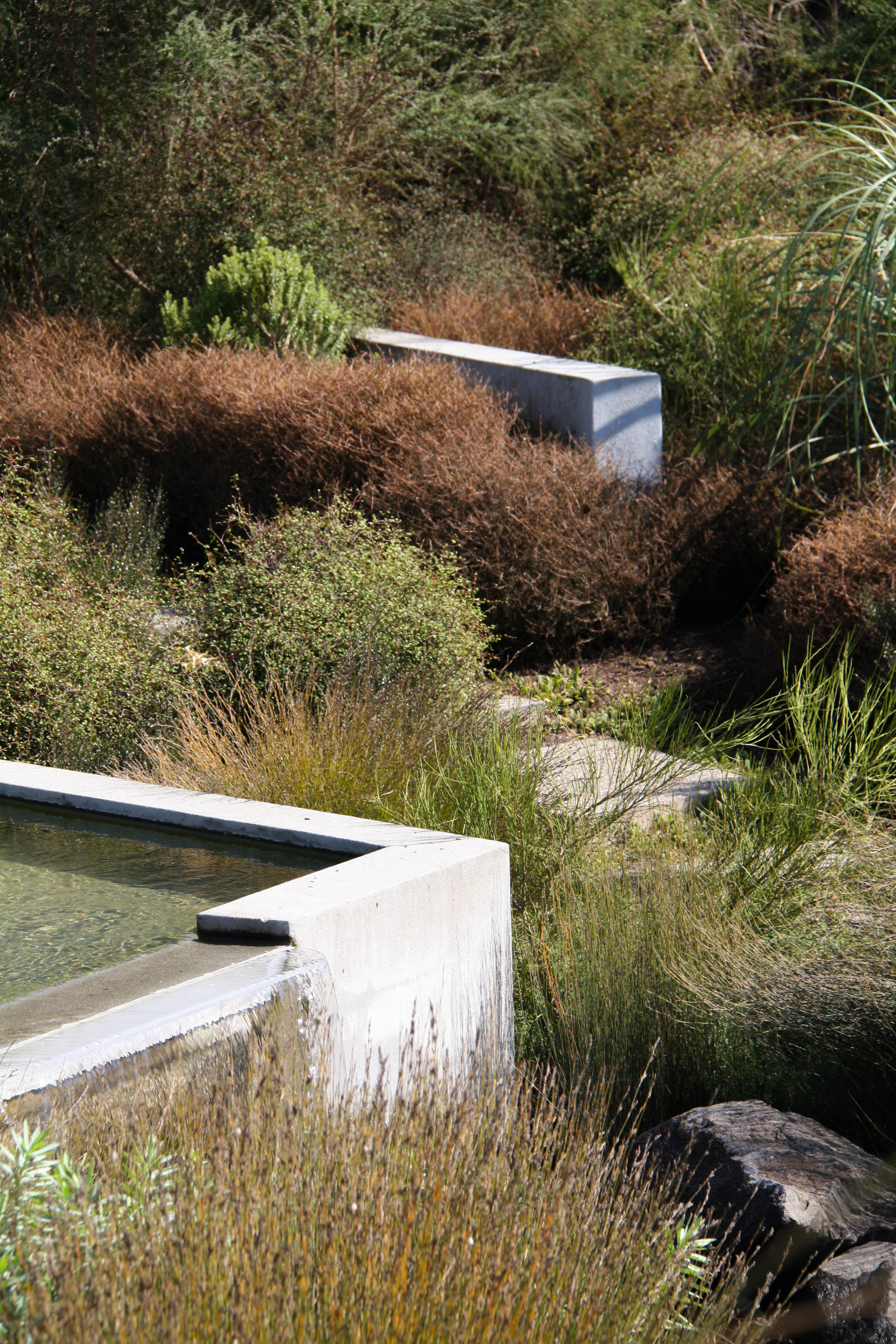 The 100% Pure New Zealand Garden RHS Chelsea Flower Show 2006 View More
