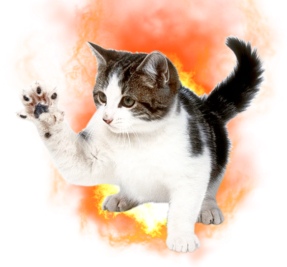 firecat.png
