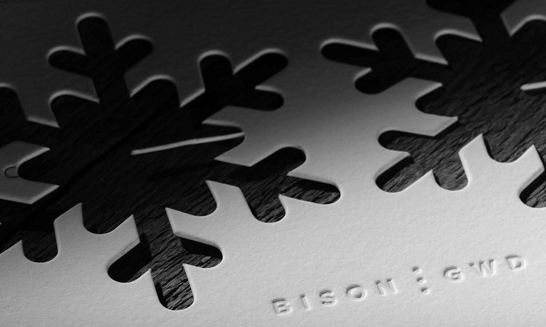 Bison Xmas Card 2012 01.jpg