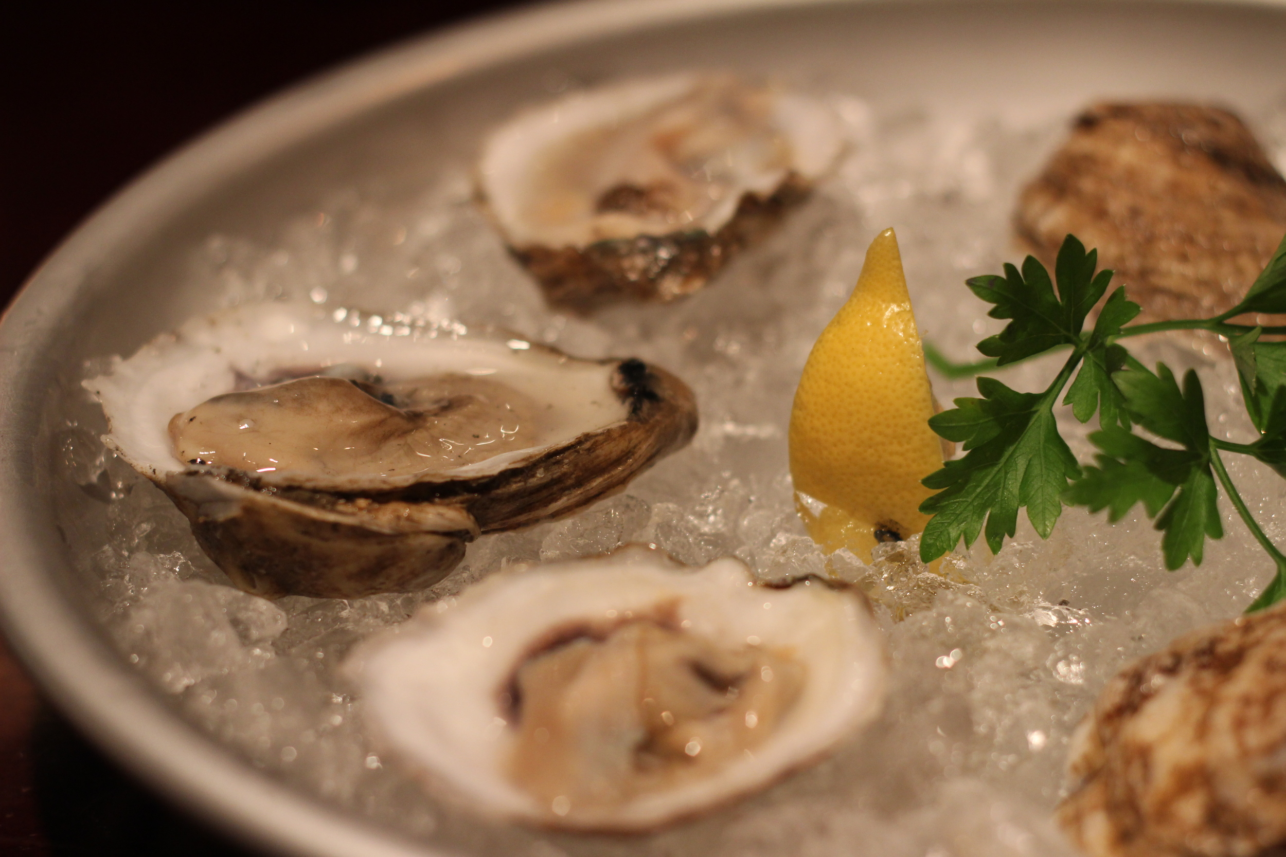 Eastern Shore Oysters