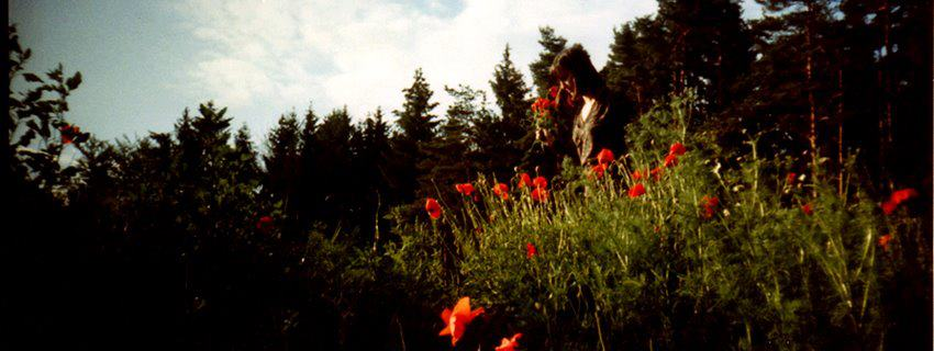 Shelby picking poppies. Bavaria, Germany, 1994.