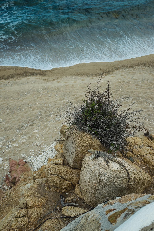 20140718 Punta pescadero 0017.jpg