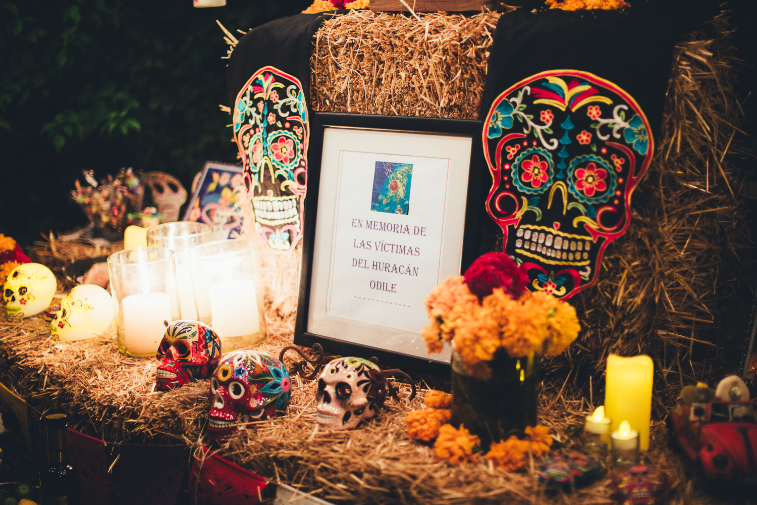 0026 Dia de Muertos Flora Farms blog 20151030.jpg