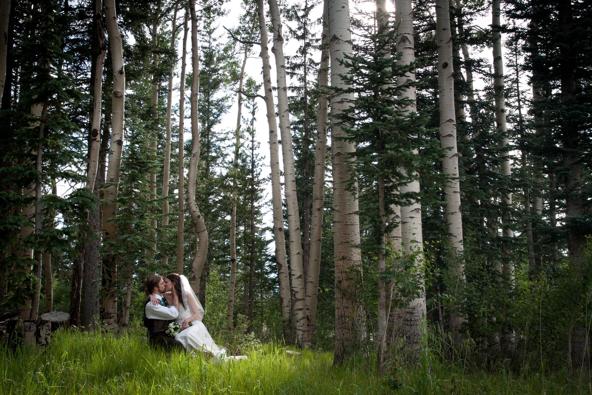 Flagstaff Wedding Sip and Twirl