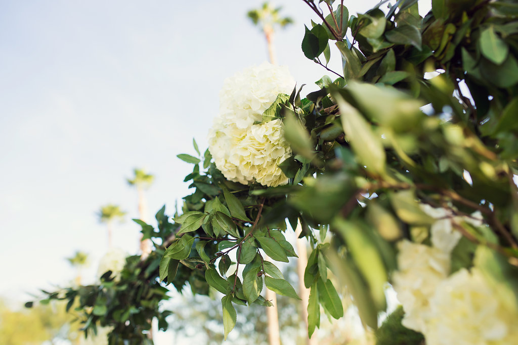 Photos of Elizabeth & Dan's Wedding by Trevor Dayley