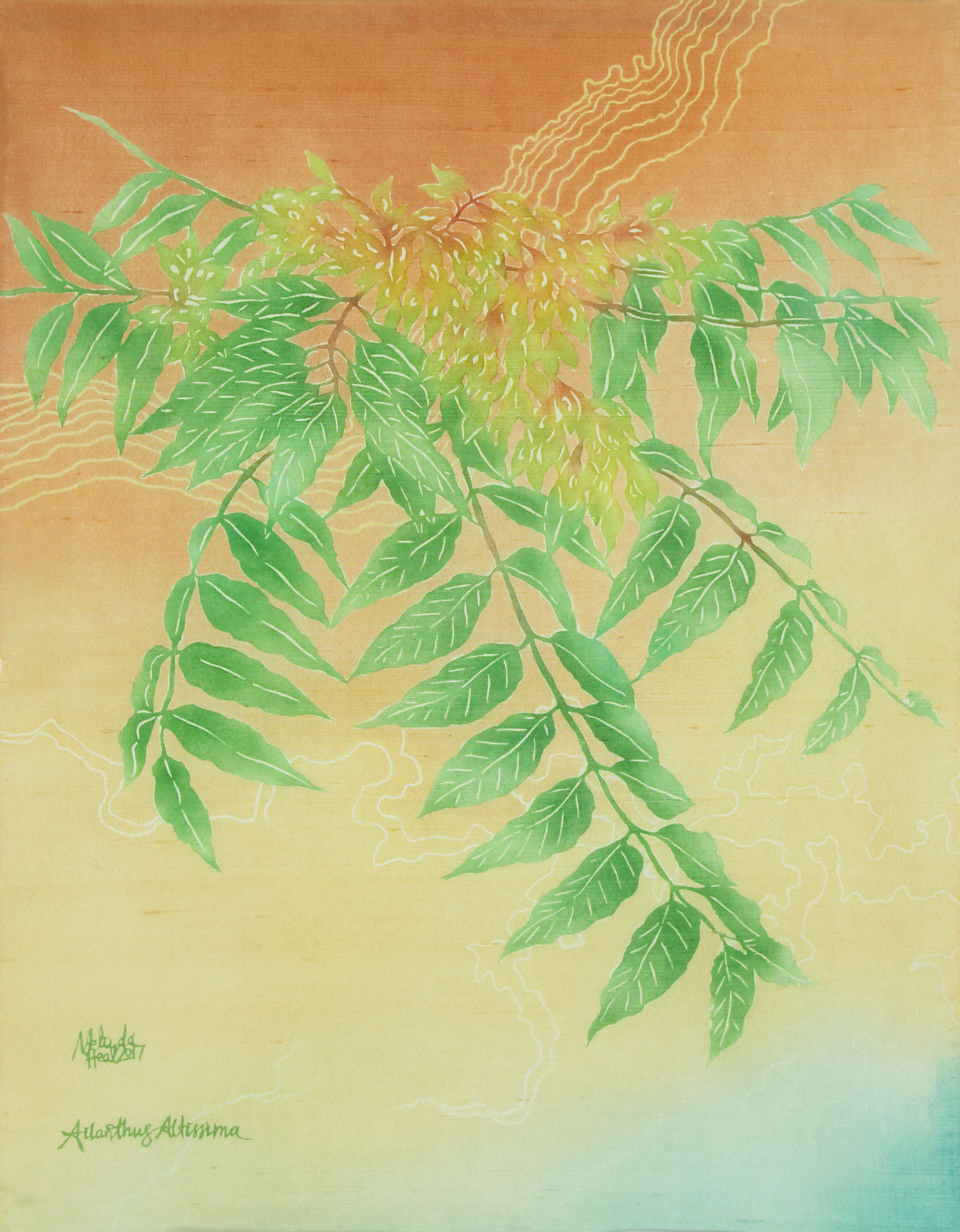 Tree of Heaven - My Weeds are Your Weeds Series - katazome and yuzen on silk dupion, 2017