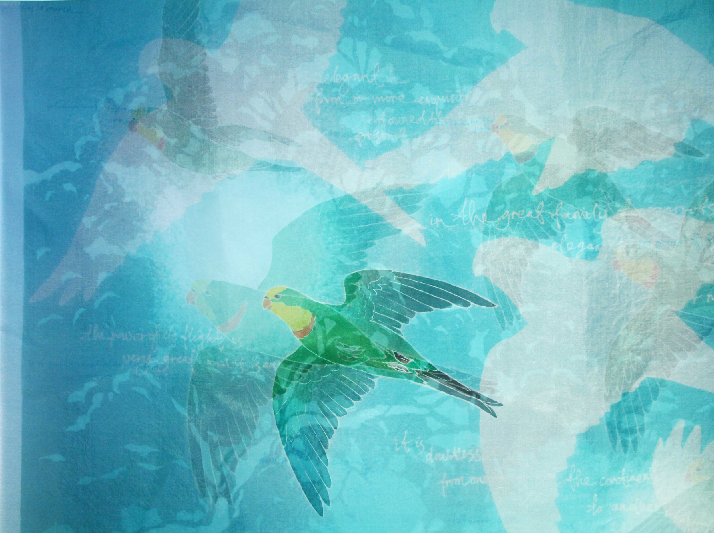 Degradation - Superb Parrot (detail) 2014. katazome and yuzen on silk organza
