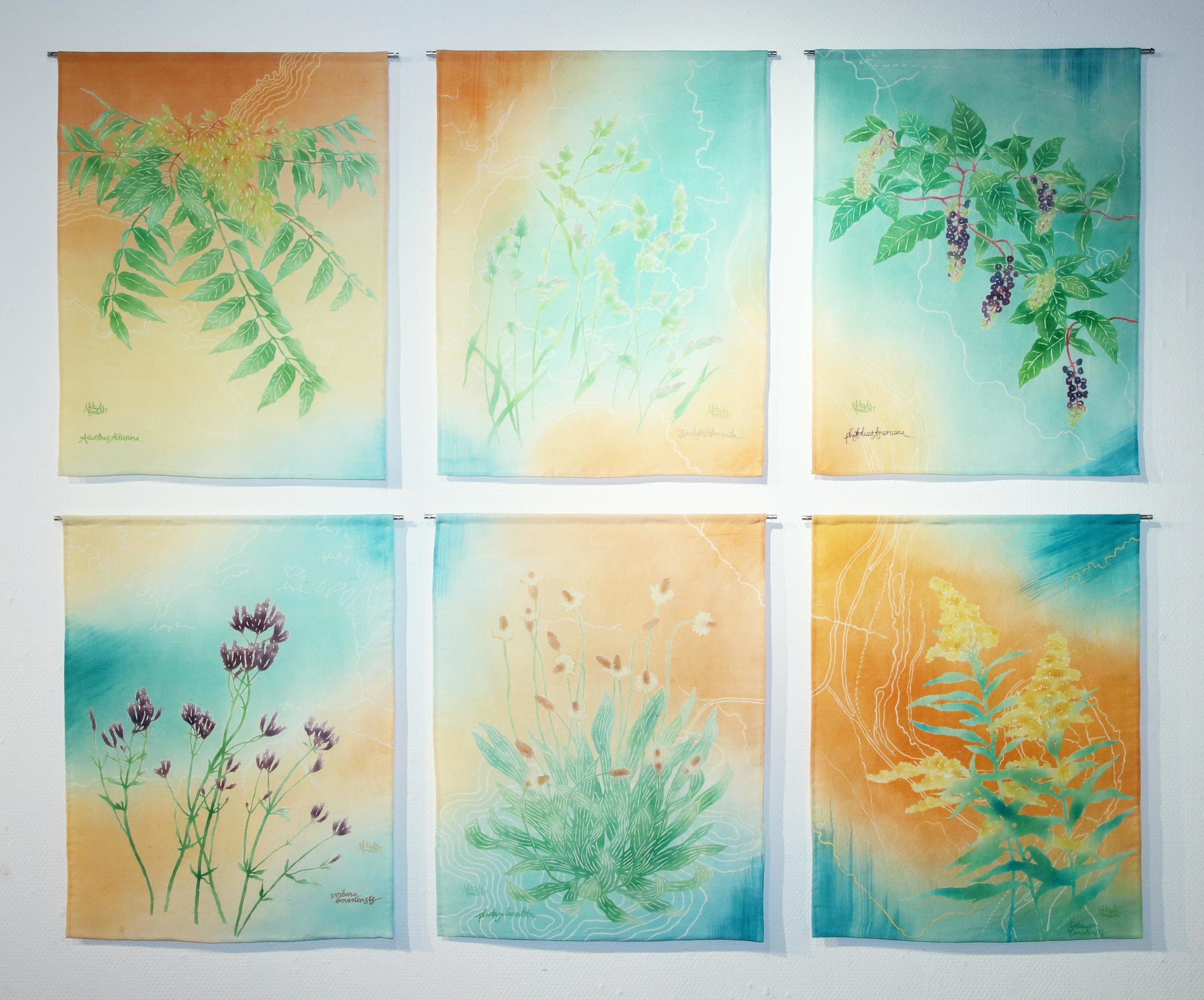 """""""My Weeds are Your Weeds are Our Weeds"""" 2017. Exhibited in New York, Canberra and Kyoto. Depicts weed species shared by all three locations."""
