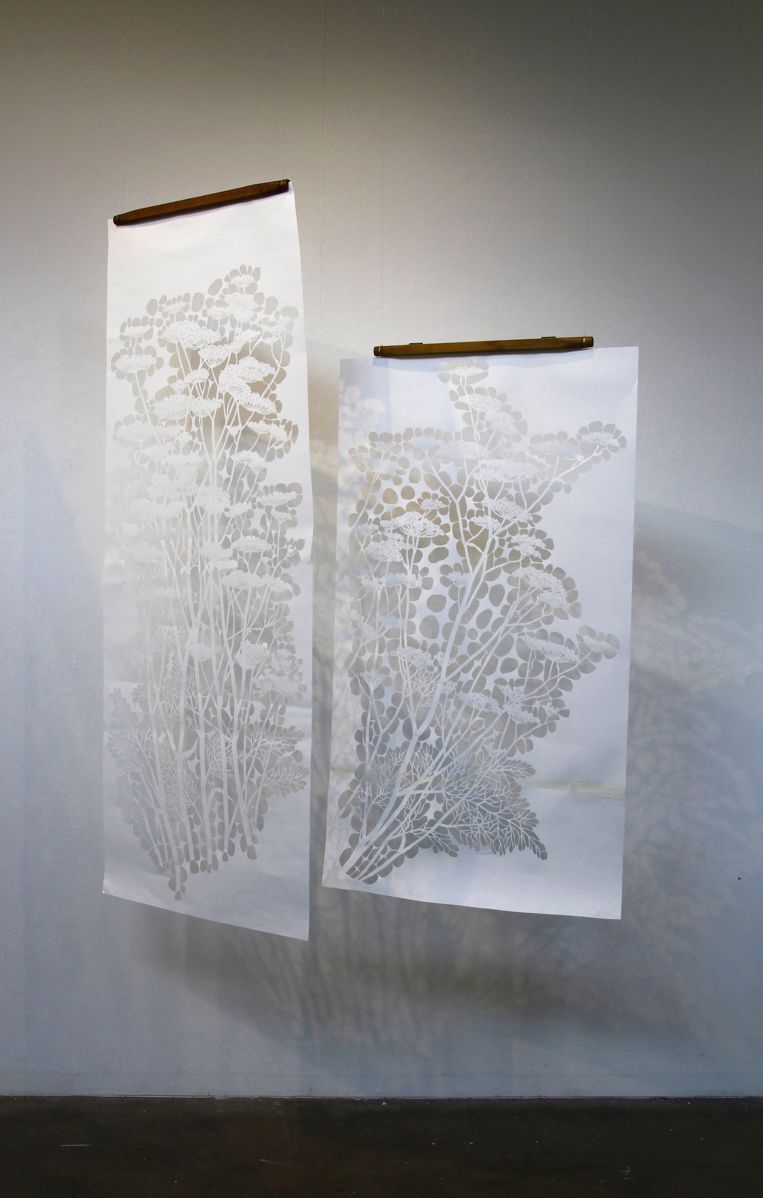 """Wild Fennel Stencils 2017. These are the katagami stencils I cut to make the work """"Along the Murrumbidgee"""". They are just a tool in the process but they are beautiful too. Dpeicts Wild Fennel, which is a weed in Canberra. On display at """"Naturescapes"""" solo exhibition, Canberra, 2017."""