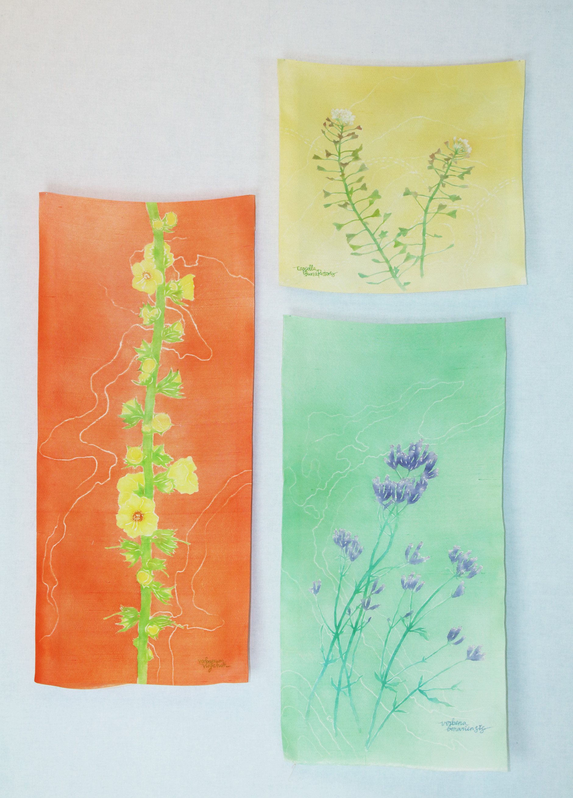 """Details from """"Beautiful Weeds of Canberra"""". Yuzen and Katazome on silk. 2017"""