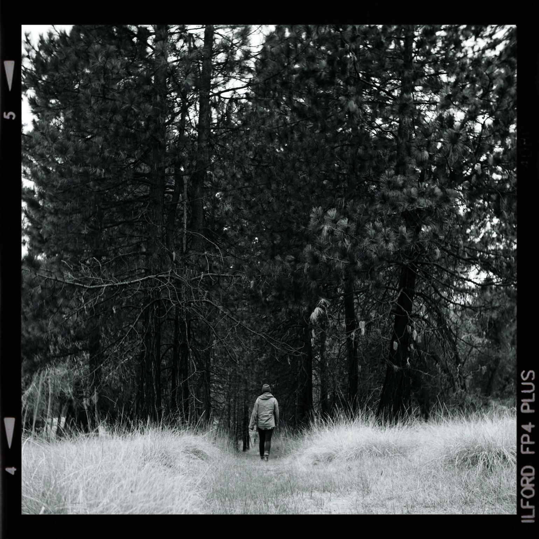 NOV13_B&W_HEATH WALKING INTO FOREST_W BORDER.jpg