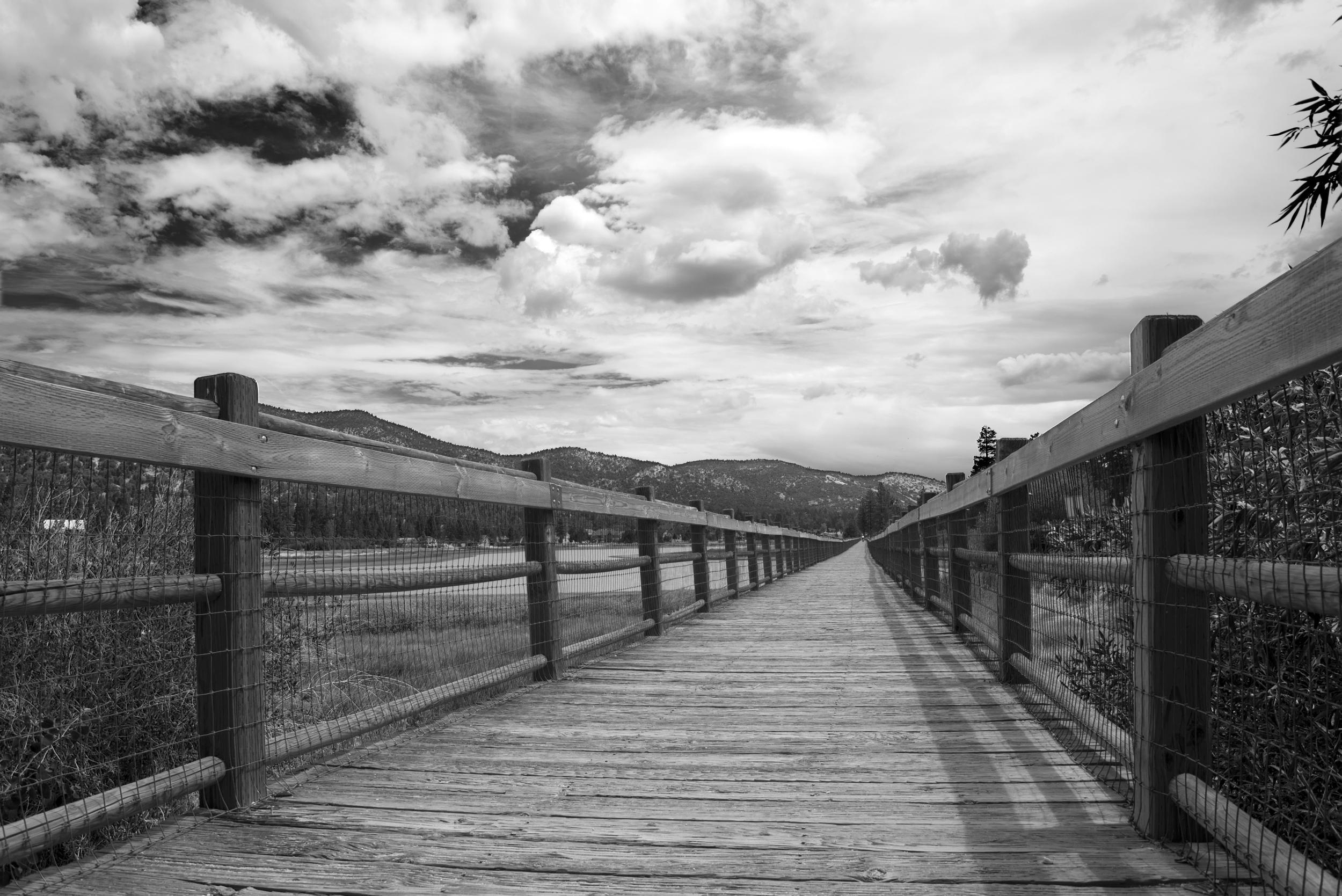 Big Bear_Bridge Scenery_Low Perspective_B&W.jpg