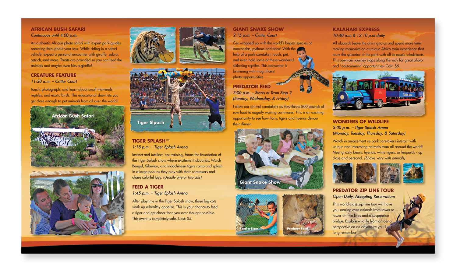 Out of Africa Brochure Design
