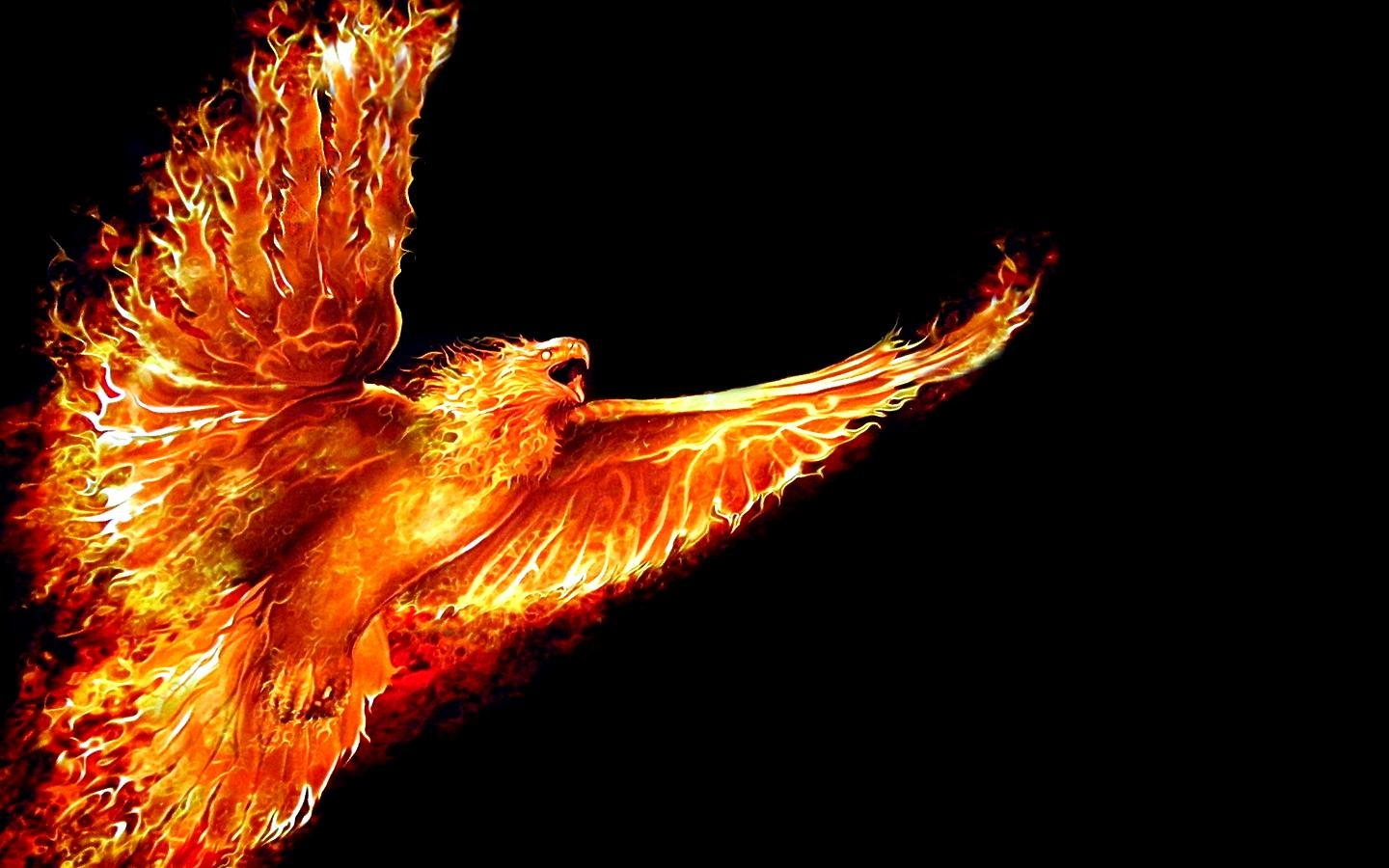 How groovy is this Phoenix?  If I ever put out an album...