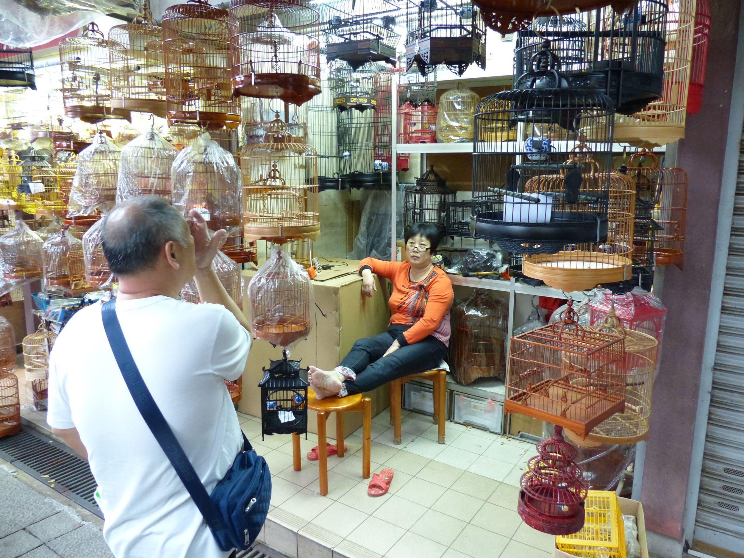 Bird market.jpg