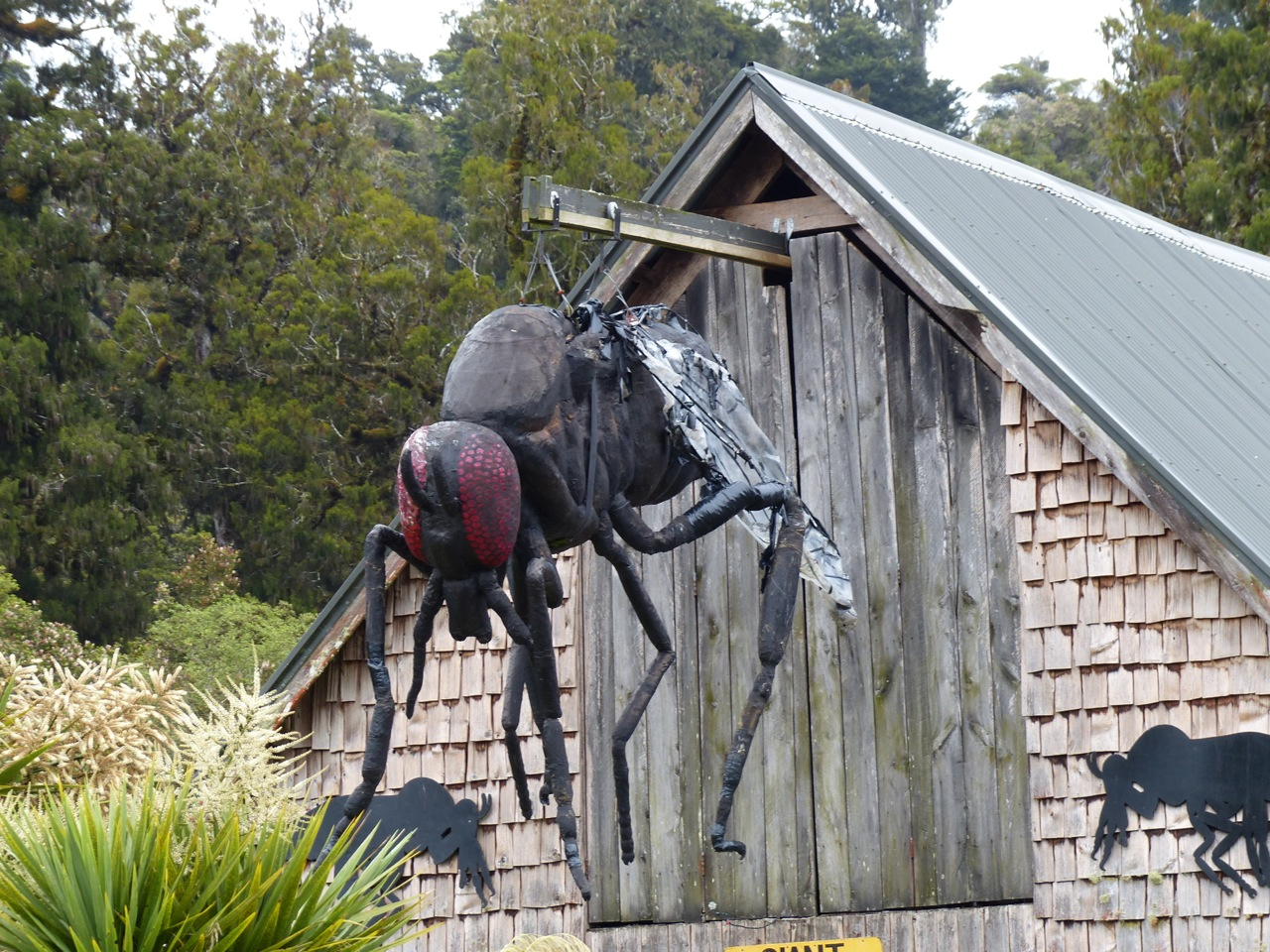 Excellent road side store in Pukekura (that's the world's largest sand fly escaping from the attic)
