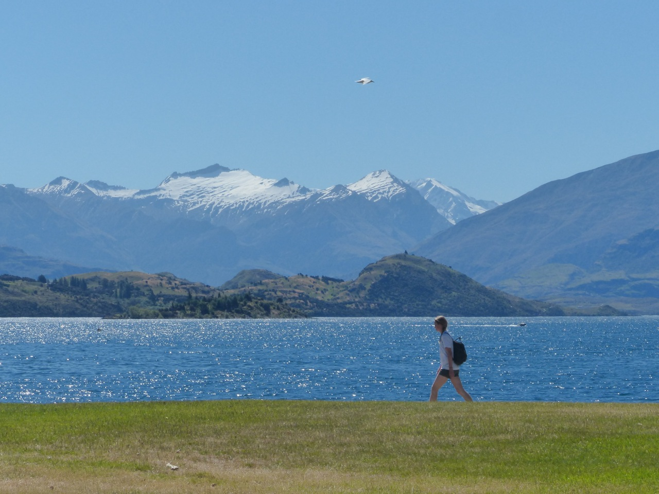 Destination Wanaka!