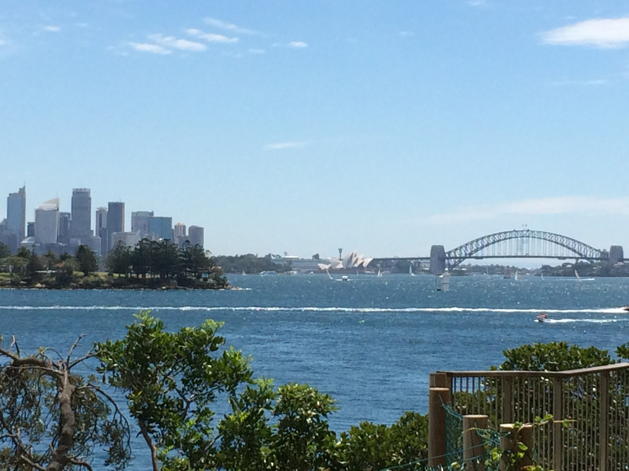 Bridge from Rose Bay.jpg