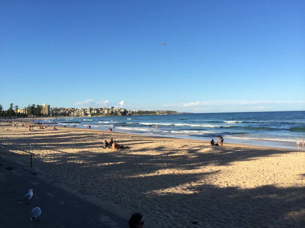 Manly Beach at 6 PM