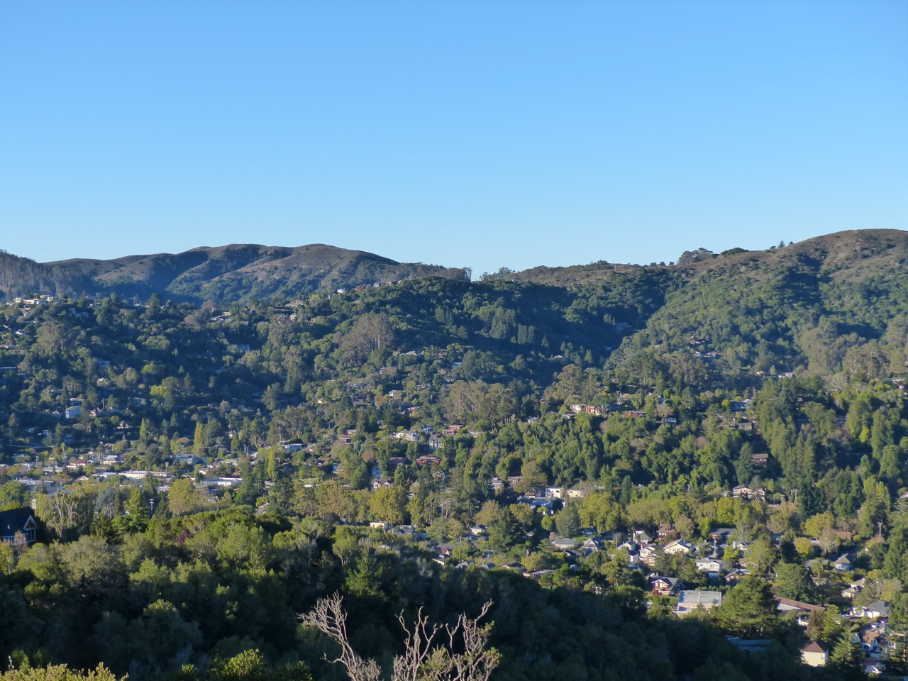 Mill Valley (Mt. Tam)
