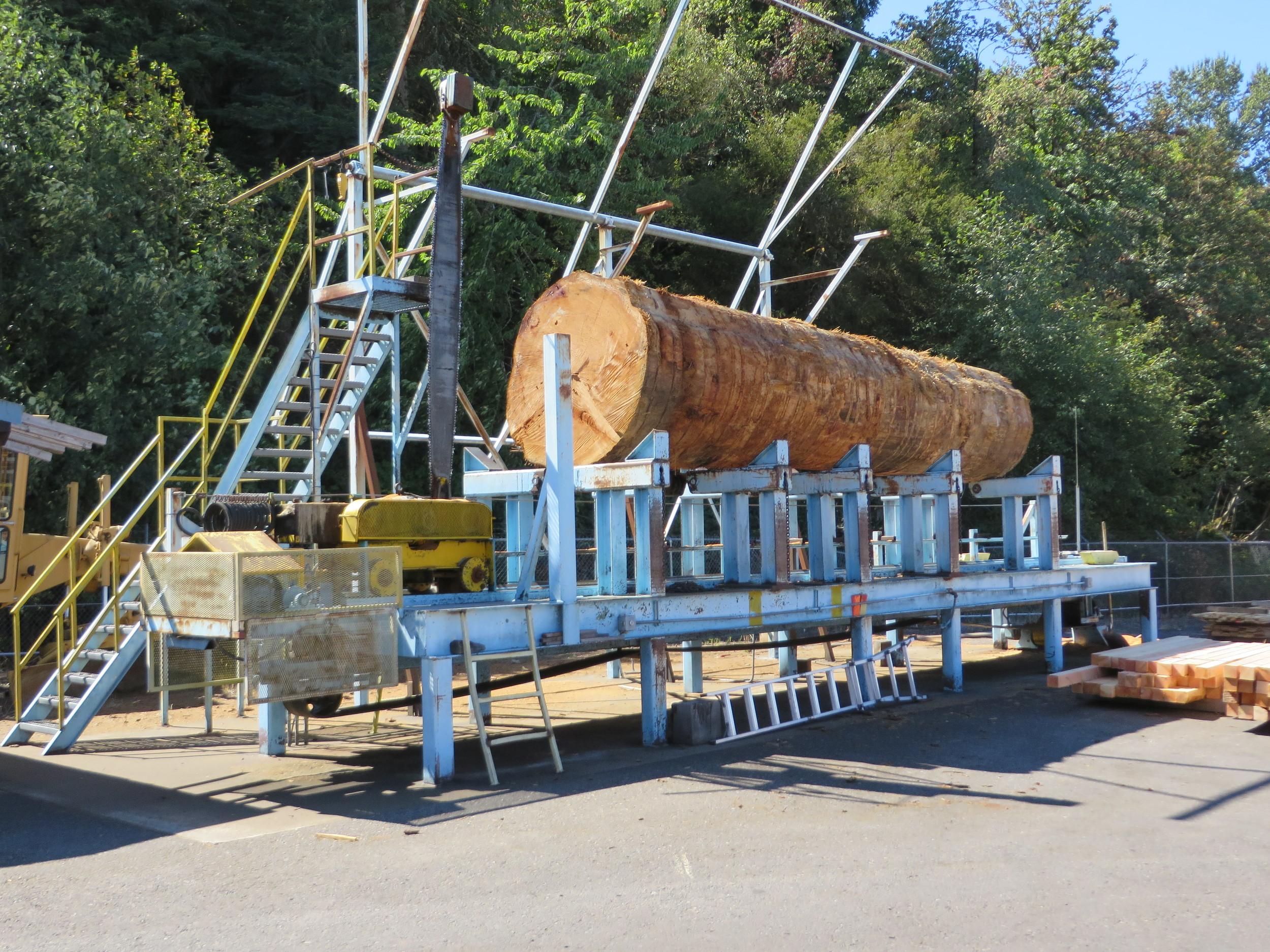 Oregon cut to size Delivered Australia Wide