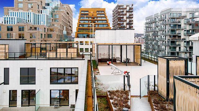 🤩EUFEMIAS HAGE🤩 er nominert til ÅRETS BYGG hos Byggeindustrien🎈Vi er 1 av 5 prosjekter som er nominert og det eneste boligprosjektet!  Foto: Oslo S Utvikling #arcasa #architecture #daily #eufemiashage #oslo #bjørvika #barcode #norway #åretsbygg #byggno #byggeindustrien #design #nordic #inspiration #roof #urban #garden #planning #play #green #space
