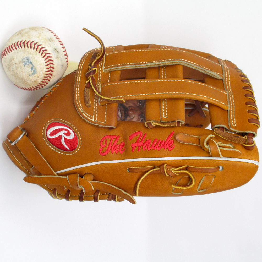 sean-kane-andre-dawson-the-hawk-rawlings-baseball-glove-art.jpg