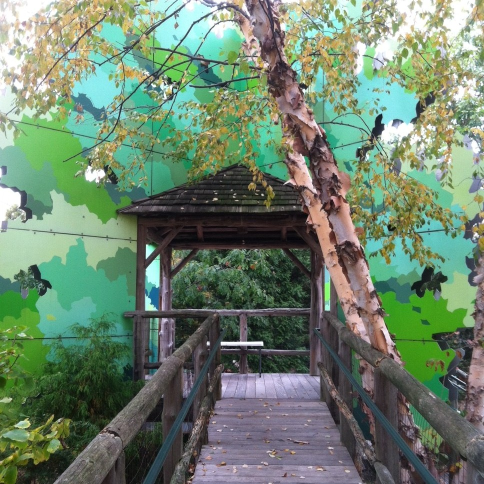 You can climb the steps or walk up the ramp to enter the Tree House for a bird's eye view of the entire Garden. You might be able to spot butterflies, hawks, and migratory birds. It overlooks the Red Oak Run and the Peace Plaza.