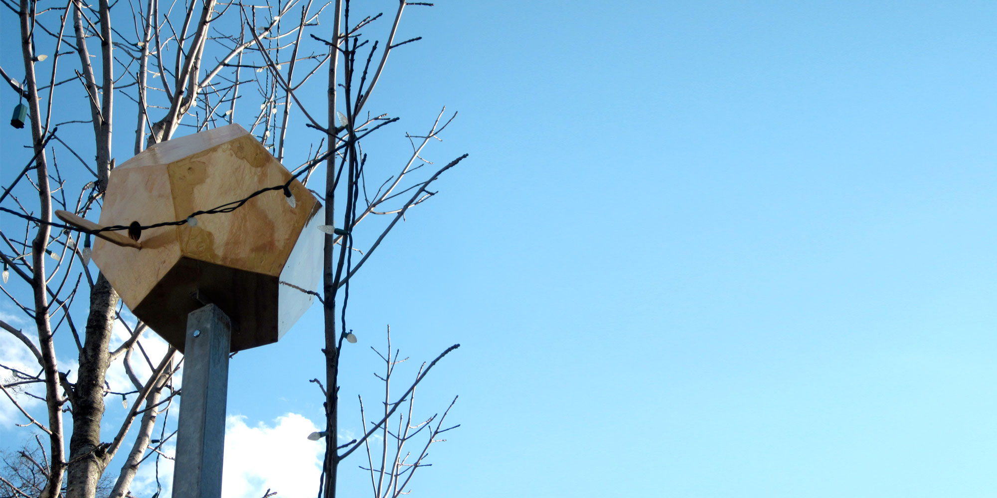 Bird House 12 - winter